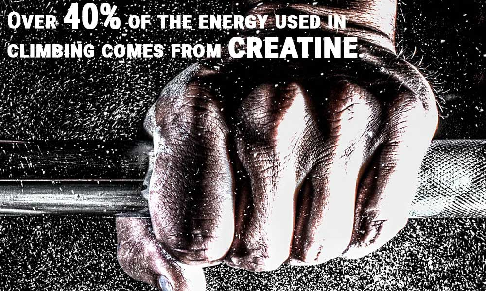 Creatine provides over 40% of the energy used in climbing.