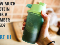 How much protein does a climber need: Part III