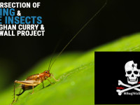 Support the BugWall Project!