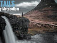An In-Depth Look at Energy Metabolism: Part II