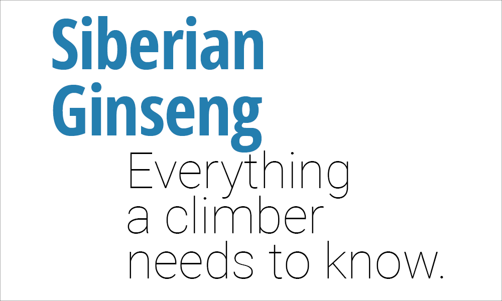Everything a Climber Needs to Know About Siberian Ginseng