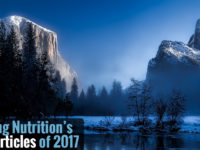 Top 5 Articles of 2017