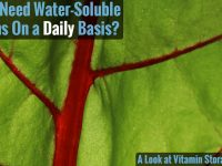 Water- and Fat-Soluble Vitamin Capacities
